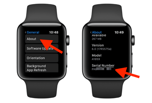 view sn on apple watch
